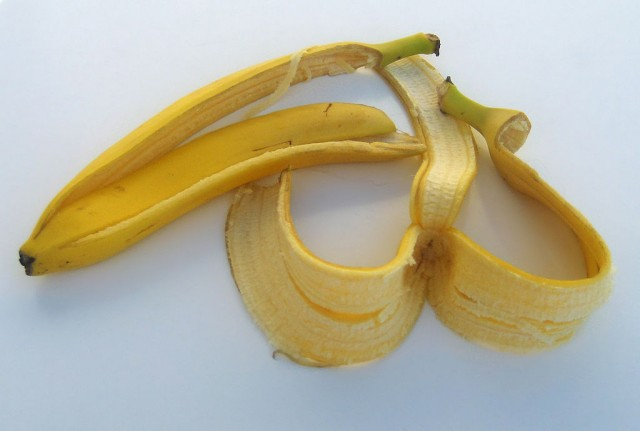 바나나 껍질을 밟으면 왜 미끄러지는가를 밝힌 일본 연구자들이 2014 이그노벨상(물리학 부문)을 받았다. - 위키피디아 제공